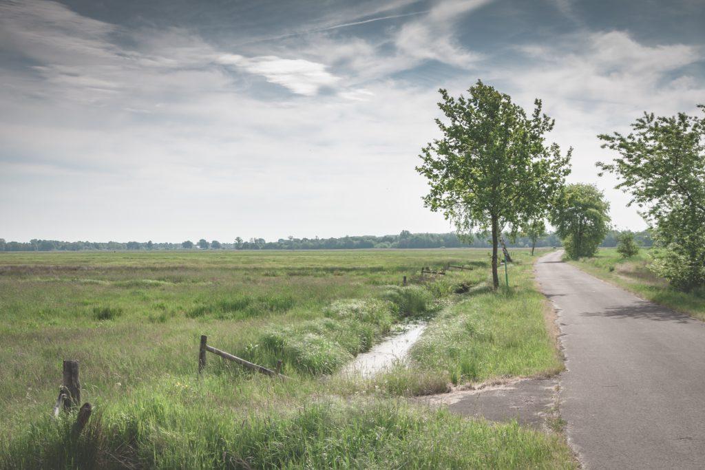 Natur Bremen - Westliches Hollerland