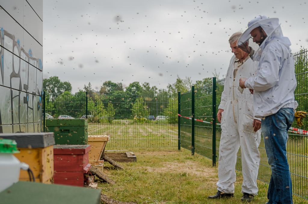 Bienenforschung Universität Bremen